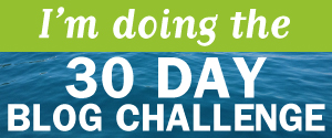 My Top 3 Tools for Running a Website: 30 Day Blog Challenge (Day 20)
